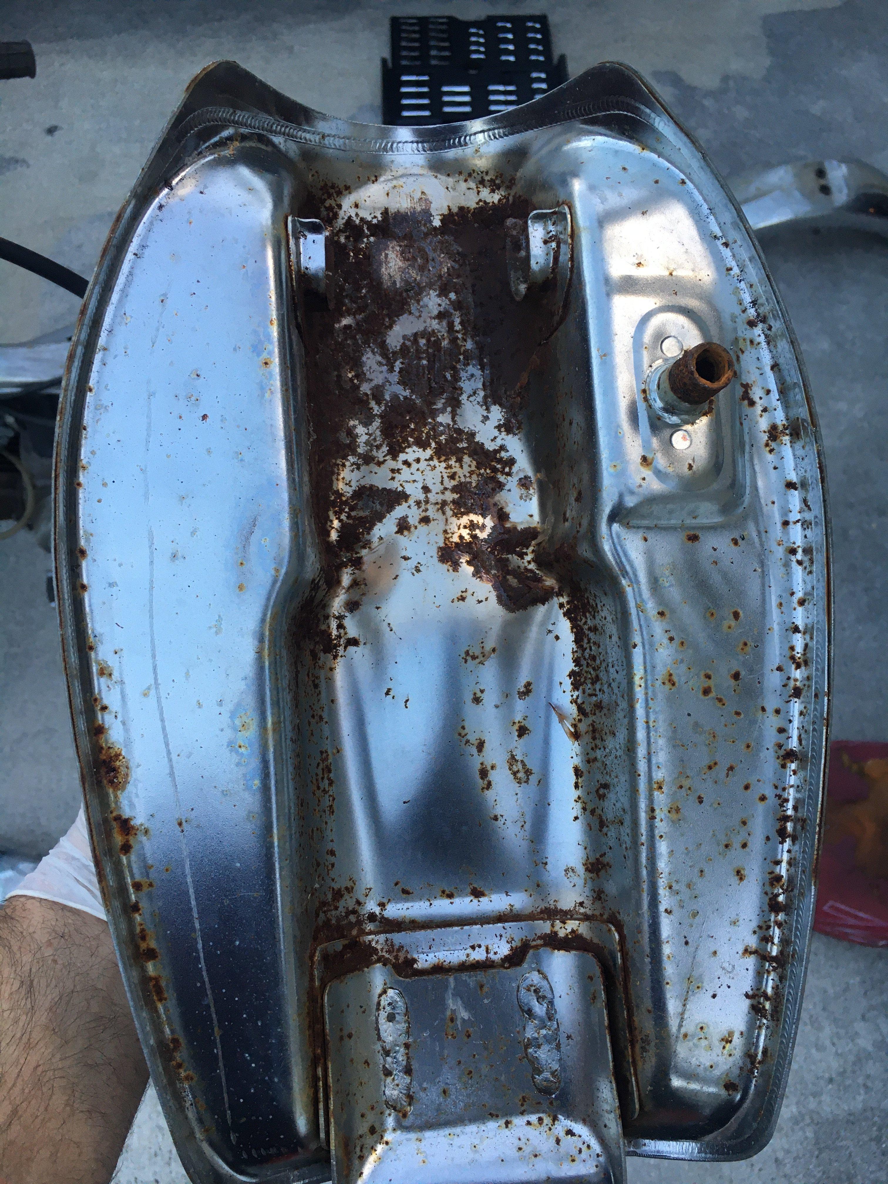 1A1E32D2-FEB7-4B3B-8054-FAA79362AE4B.jpeg